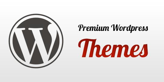 10 temas y plantillas Premium para WordPress